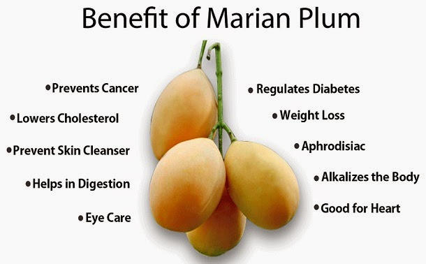 marina-plum-health-tips