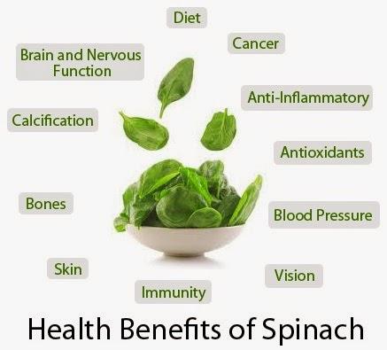 spinach-health-benefits