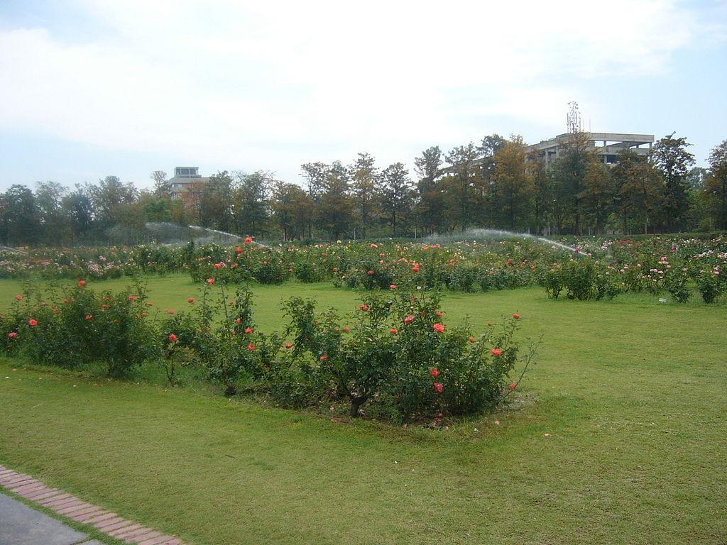 chandigarh-green-city-in-india