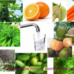 Dengue Fever – Treating Ailment with Herbal Home Remedies