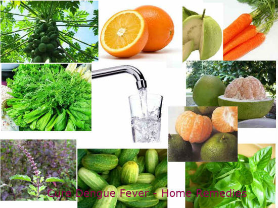 fever treatment home remedies