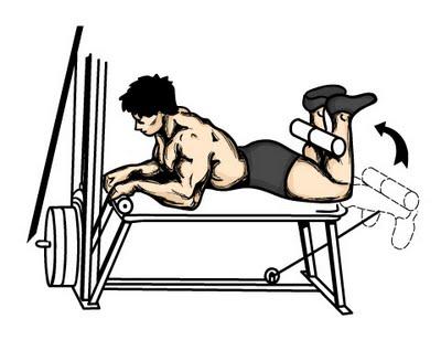 friday-gym-workout-schedule-leg-curls