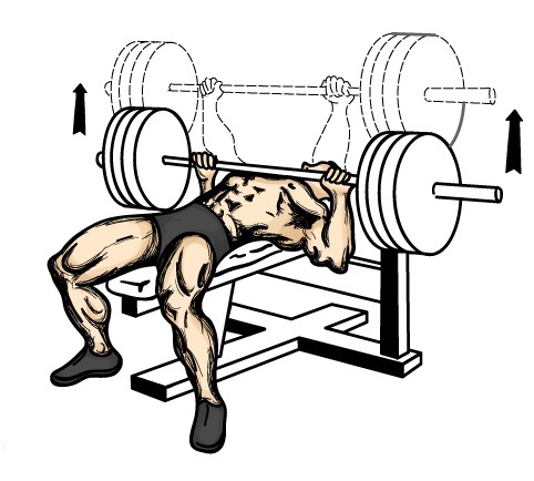 monday-gym-schedule-for-chest-increase-flat-bench-press