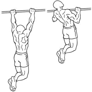 saturday-gym-workout-schedule-chin-ups