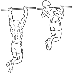saturday-gym-workout-schedule-chin-ups