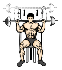 wednesday-gym-workout-schedule-seated-barbell-military-press