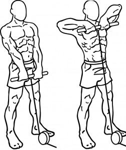 wednesday-gym-workout-schedule-upright-cable-row