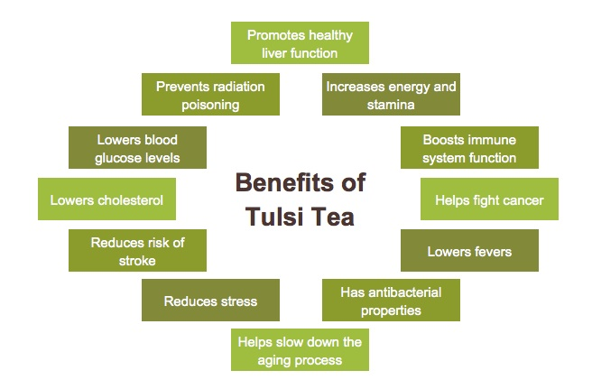 health-benefits-of-tulsi-tea