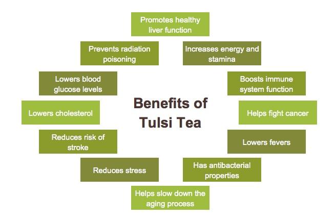 health-benefits-of-tulsi-tea