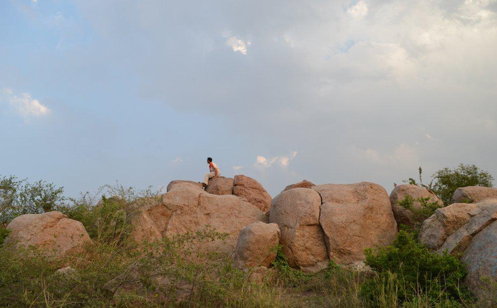 Parthasarathy Rocks, JNU