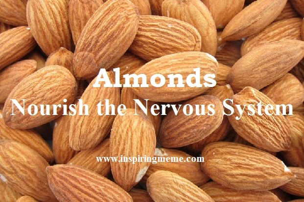 almonds dry fruits health benefit