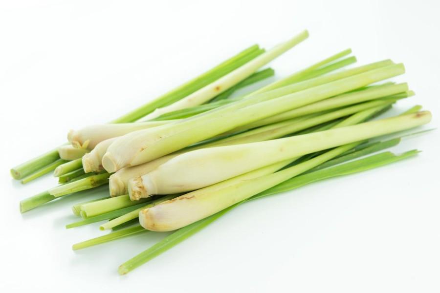 Top 6 Amazing Health Benefits of Lemongrass
