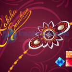 Raksha Bandhan Festival - A Bond Between Brother and Sister