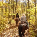5 Things to Do if You Get Lost in the Wilderness While Trail Riding