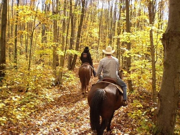 things to take trail riding