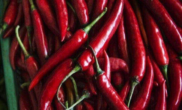chilli vegetables for fat loss