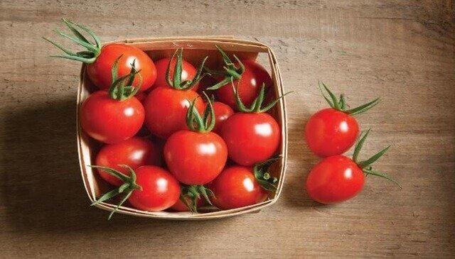 tomato fat burning vegetables
