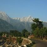 Why You Should Be Doing Yoga Teacher Training in Dharamshala?
