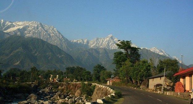 yoga in dharamsala