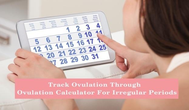 menstrual cycle ovulation calculator