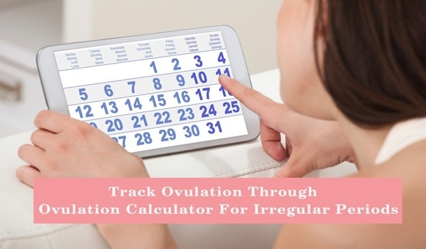 menstrual cycle ovulation calculator