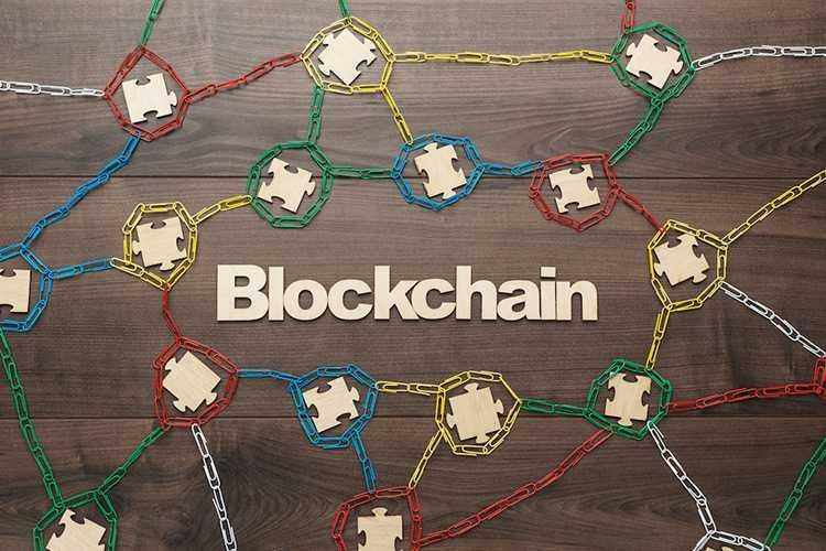 blockchain professionals