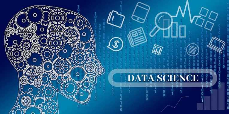 data science professionals