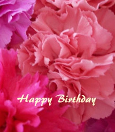 carnation birthday bouquet