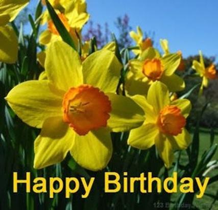 daffodil birthday flowers