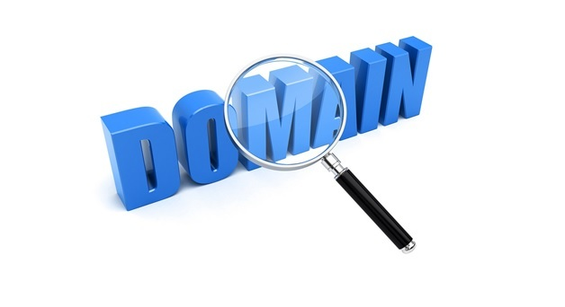 domain name guide