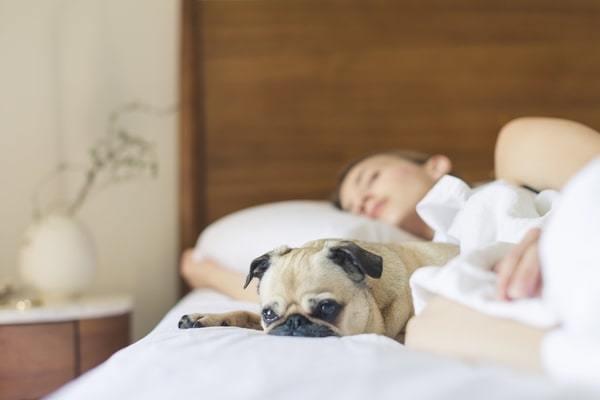 sleep apnea health risks