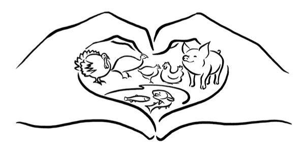 feed additives animal welfare