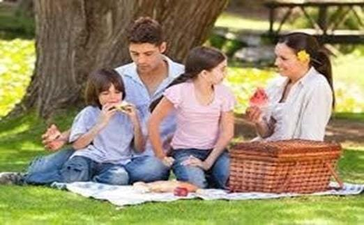 plan for a casual picnic