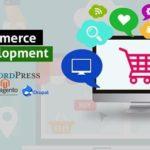 Get Your Ecommerce Website Like Amazon and Flipkart