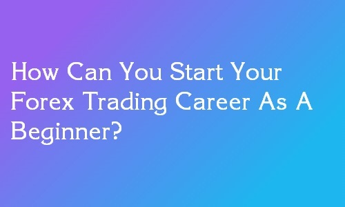 build a career in forex trading