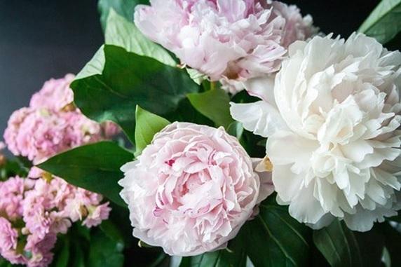 love flowers gift ideas