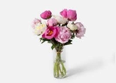 peonies flower bouquets