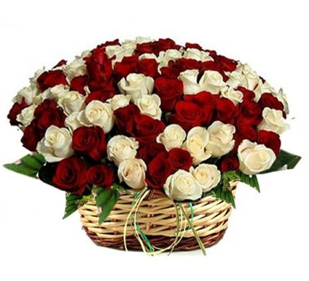 red and white rose basket