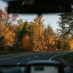 Didn't See That Coming: Windshield Care Tips to Help You Be a Better Driver