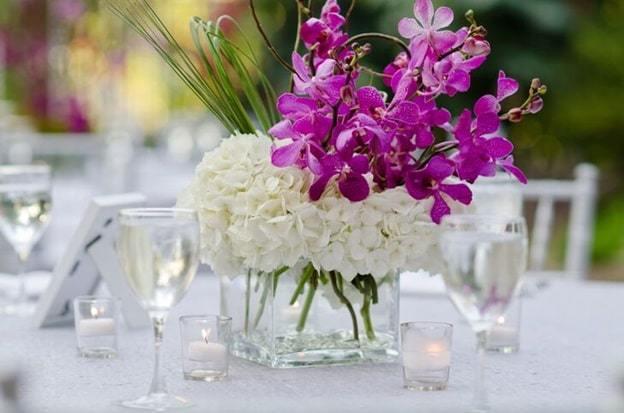 purple orchid vase