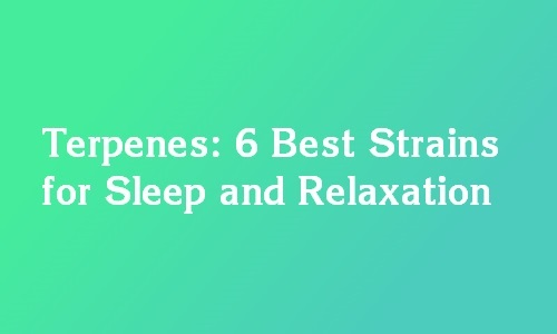 best terpenes for sleep