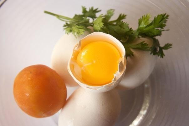 egg white nutrition