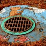 What Every Homeowner Needs to Know About Blocked Drains
