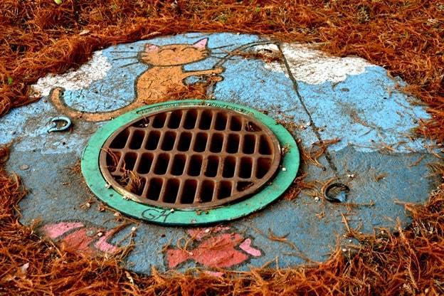 blocked drains