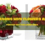 Reasons Why Flowers are Perfect Gift for Loved Ones