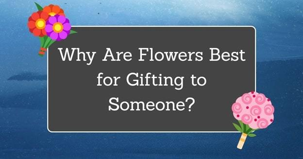 why flowers are best gift